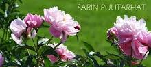 Sarin puutarhat -blogi