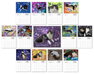 Anakin Tht Two Legged Cat Calendar 2014