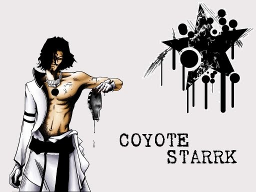 Coyote Starrk And Lilynette Gingerback
