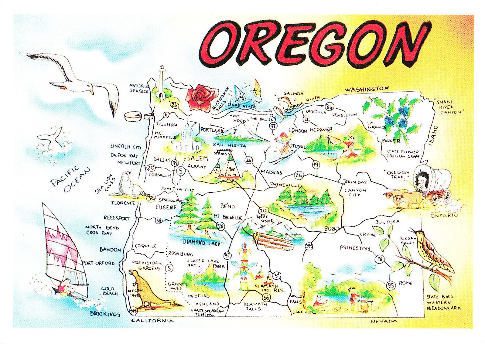 oregon is a state in the pacific northwest region of the united states it is located on the pacific coast with washington to the north california to the