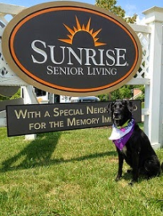 The Benefits of Companion Animals for Assisted Living Residents