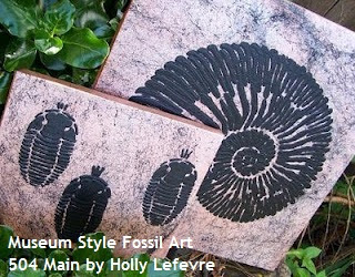 DIY Museum Style Fossil Art