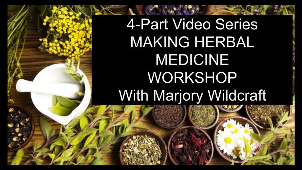 Herbal Medicine Workshop