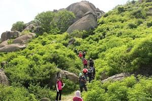 Granite steps, rayakottai fort