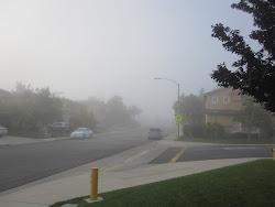 Temecula Morning Mist