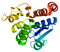 Image of the DJ-1 Protein