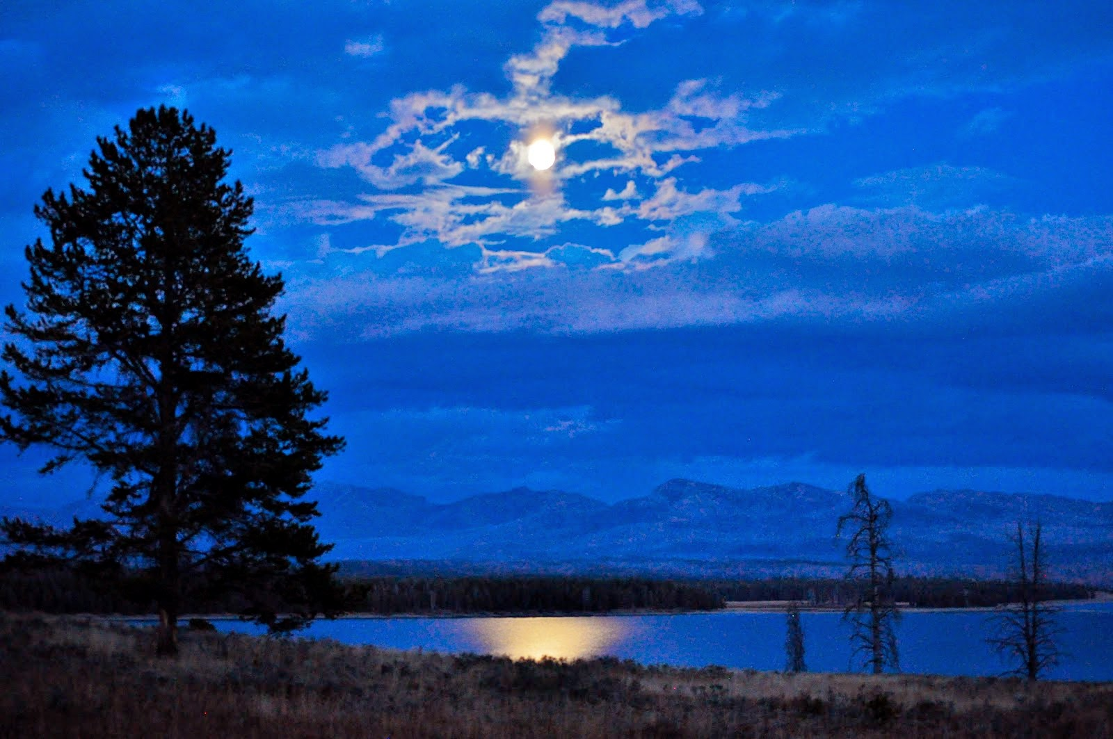 The Invitation A Poem by Oriah Mountain Dreamer Soul Flower Blog