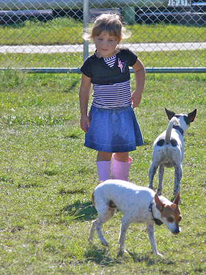 Fox Terriers Kids, dog parks