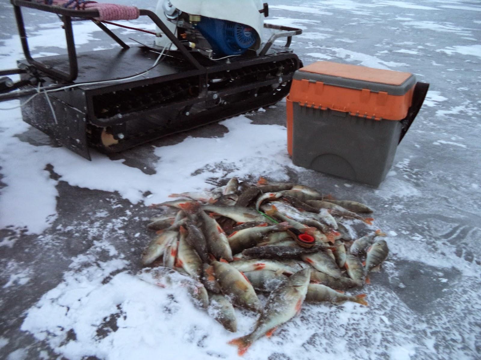 видео рыбалка в вологодской обл