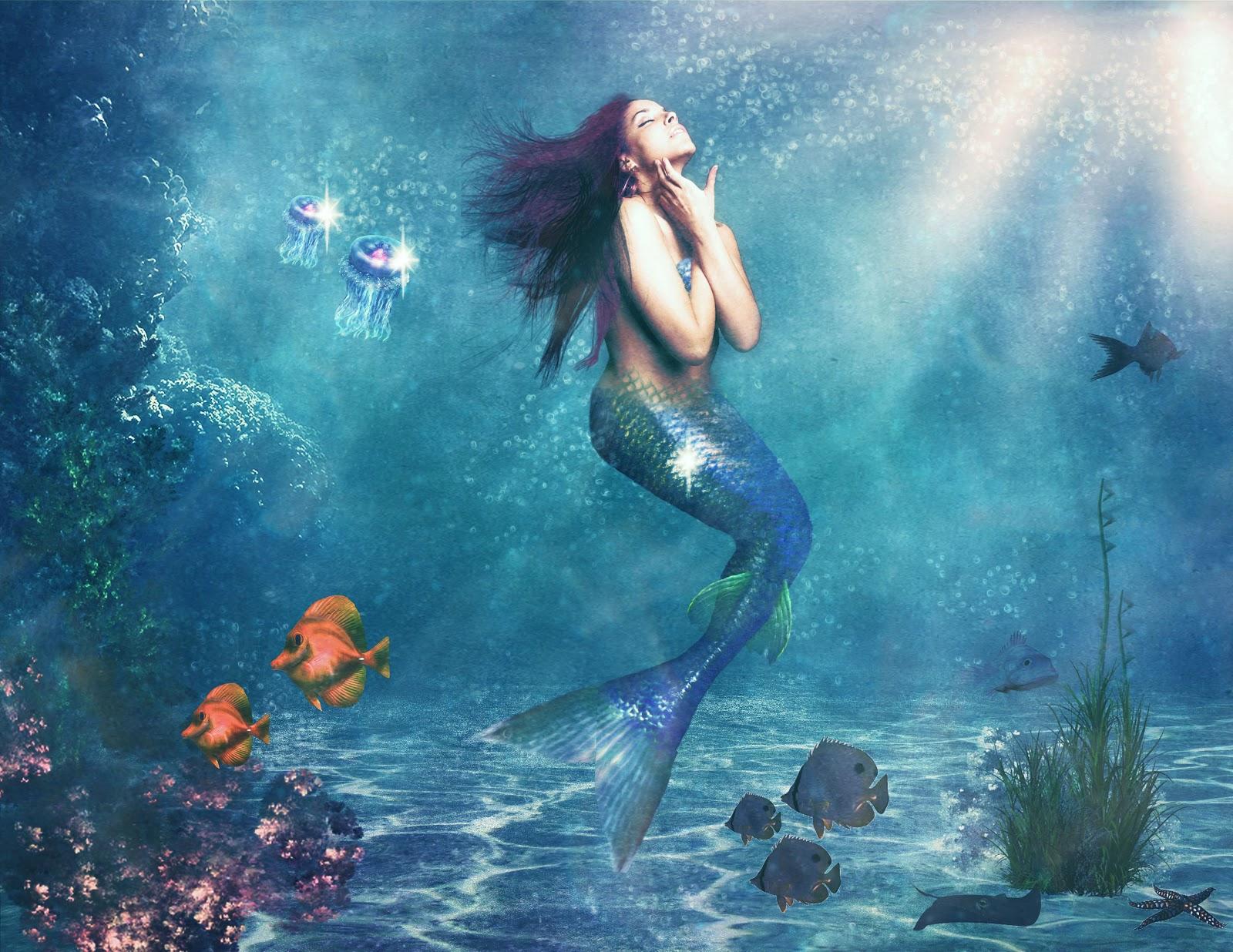 Bookland viaggiando tra i libri recensione il destino - Immagini della vera sirena ...
