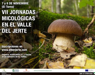 VII Jornadas Micológicas en el Valle del Jerte (7 y 8 de noviembre)