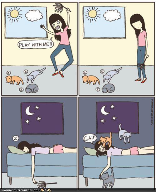 funny-pictures-cat-comics.jpg