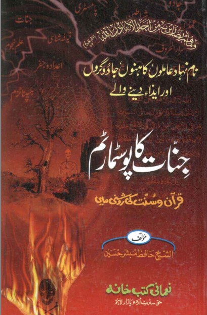 Jinnat Ka PostMortem Urdu Book Written By Mubashir Hussain