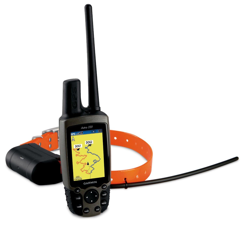 Dog Tracking Collars Iphone