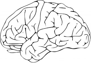 Todo sobre paralisis cerebral
