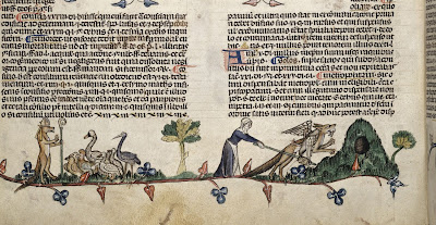 Bottom of a manuscript page showing woman surrounded by geese.