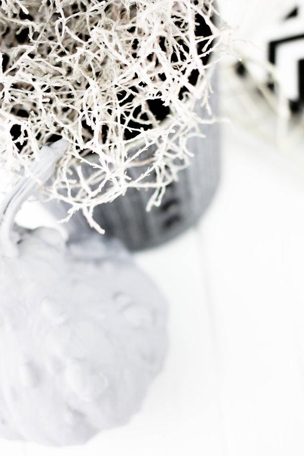 Silberdraht und grauer Kürbis - DIY Herbstdeco