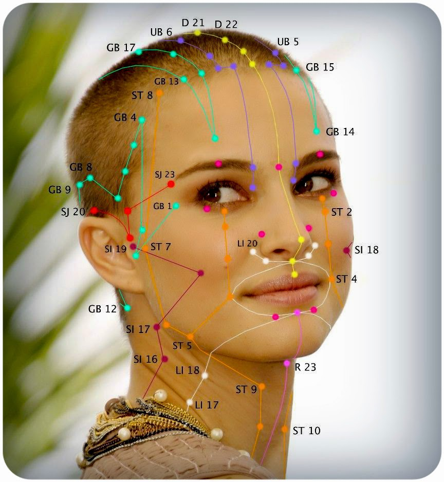 Free Simplified Acupuncture Point Chart   Face …