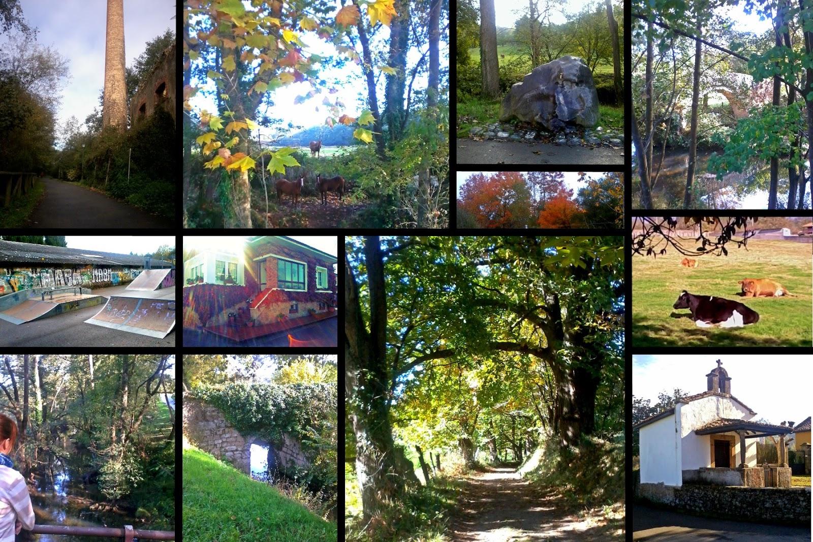 Asturias naturaleza sendero