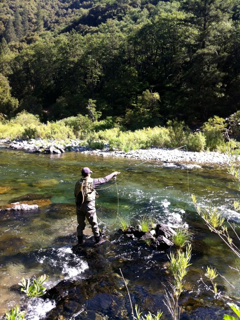 Scott hopper 39 s blog hank patterson fly fishing guide for Hank patterson fly fishing
