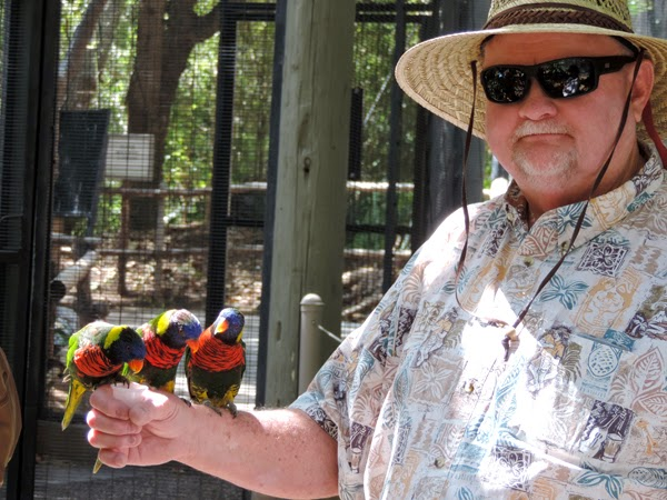 Opa doing his impression of the Lorikeet whisper! Reef Indy was pensive but impressed.