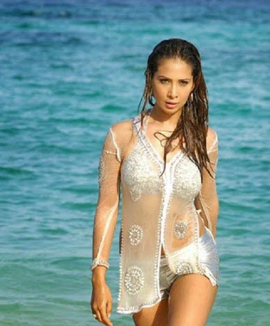Hot and Sexy, Sizzling Photos, Of Kim Sharma,