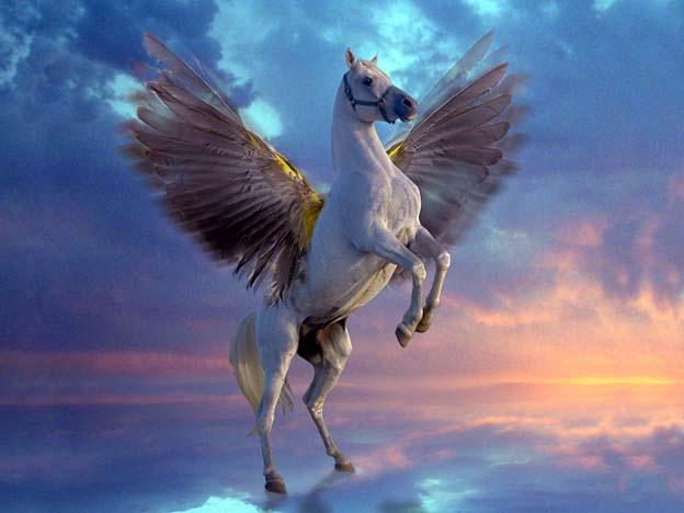 Fantasy pegaso cavallo alato for Disegni cavalli alati
