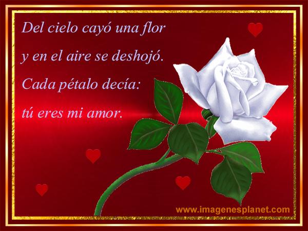 Imagenes Angelitos Con Frases Angelitos Con Frases de Amor