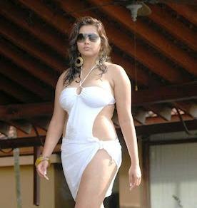 Namitha-hot-in-bikini-images-4