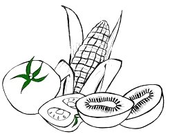desenho de milho e tomates para pintar