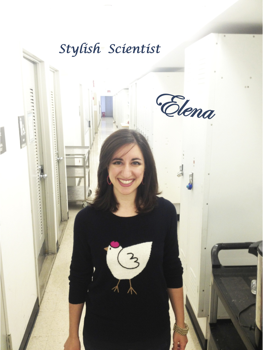 stylish scientists, elena lucchetta, science and fashion, columbia university