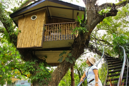Pasonanca Tree house