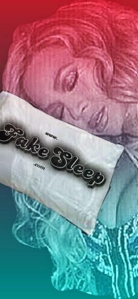 FakeSleep