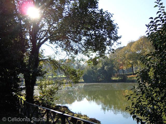 villa ada lake