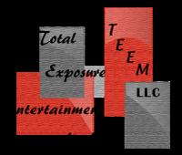TEEM LLC