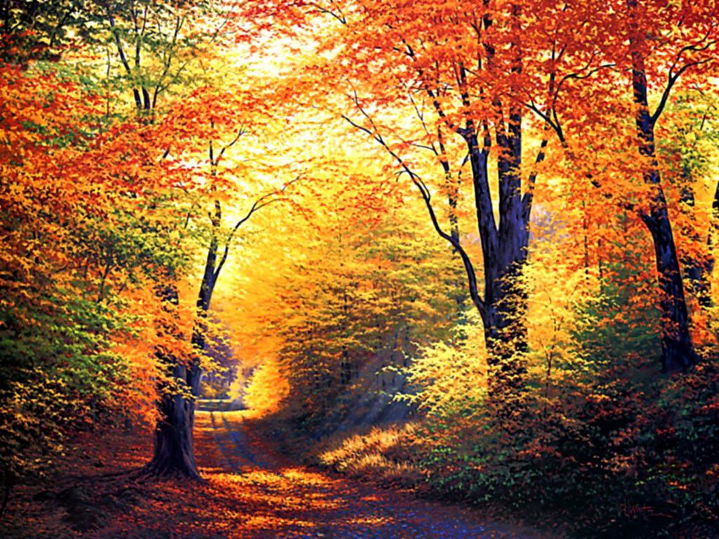 http://4.bp.blogspot.com/-ttnd5VE9Vo8/TnuvQ6izYzI/AAAAAAAAAVs/Al77PvPj14Y/s1600/autumn-desktop-wallpaper-download.jpg