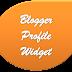 Set Profile Widget for Blogger Below the Post
