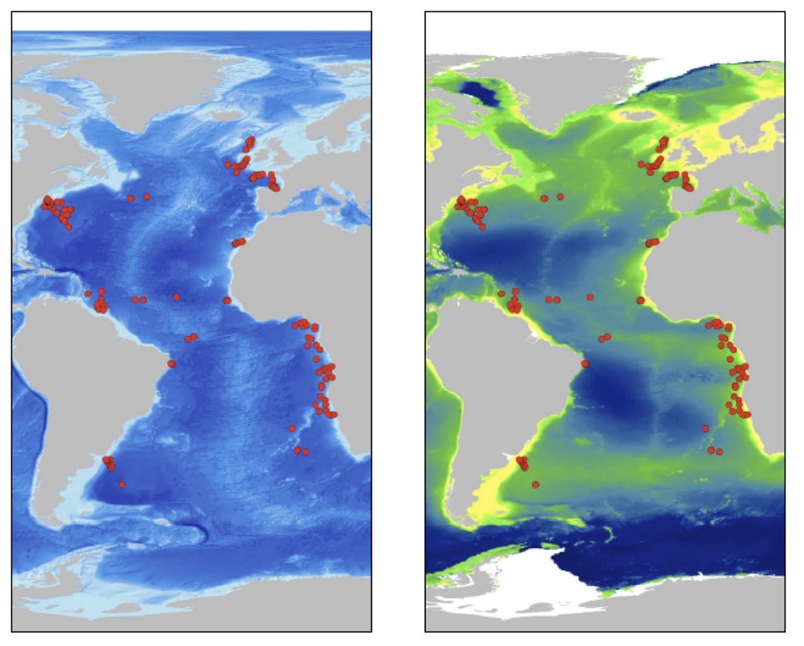 Mostly Open Ocean Deepsea Diversity - Map showing ocean depths