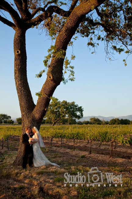 Firestone Vineyard - San Luis Obispo Wedding Photographer - Santa Barbara County Wedding Venues - studio 101 west