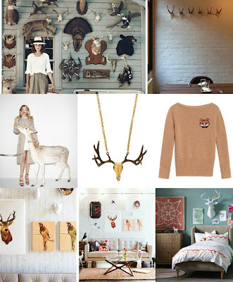 Collage: Taxidermy inspiration