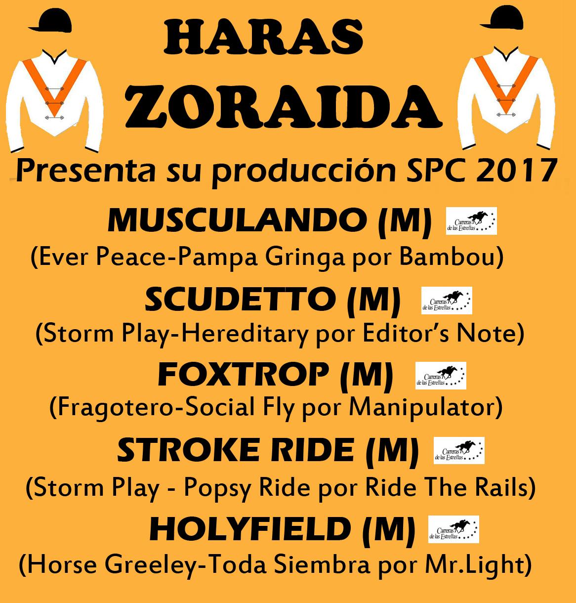 HS ZORAIDA 1