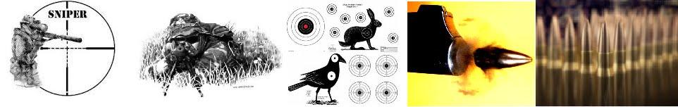 Armas do Sniper