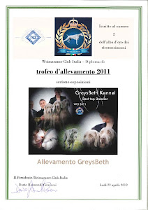 The winner is Greysbeth kennel top breeder Italy 2011
