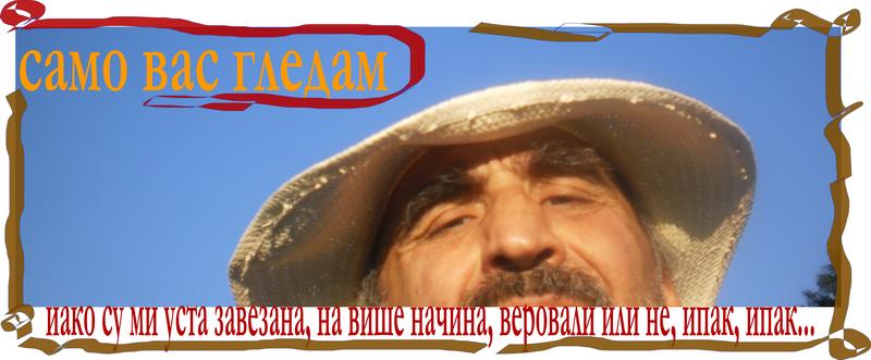 ГЛАСНИК Сазвежђе З
