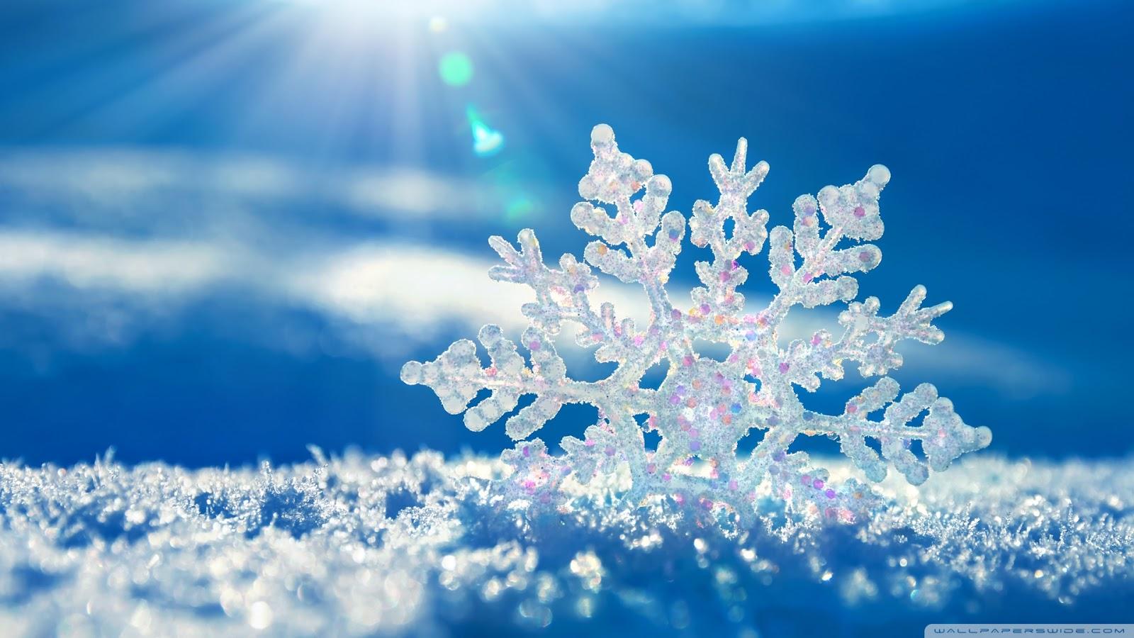 kar resimleri