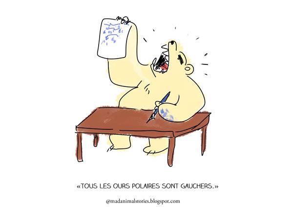 tous les ours polaires sont gauchers