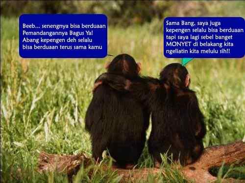 Sepasang Monyet Lucu Pacaran Lucu