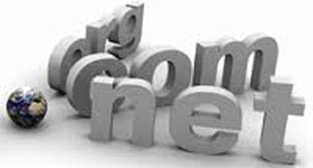 Mengenal Lebih Dekat Domain .Net