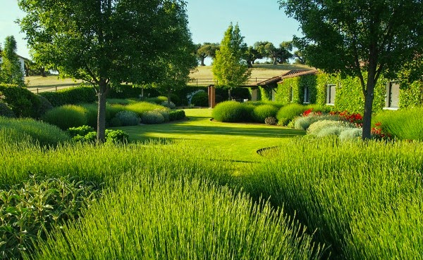 Jardín en Salamanca