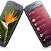 Ubuntu For Phones Announced Today